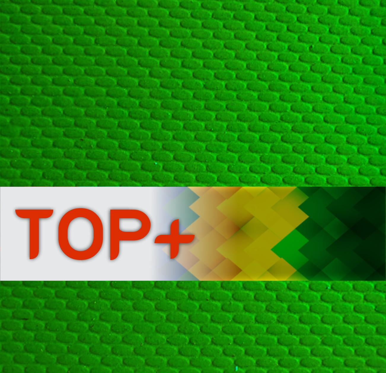 Placa de Borracha Microporosa TOP+ - 1,60 x 1,05 - 65% BORRACHA